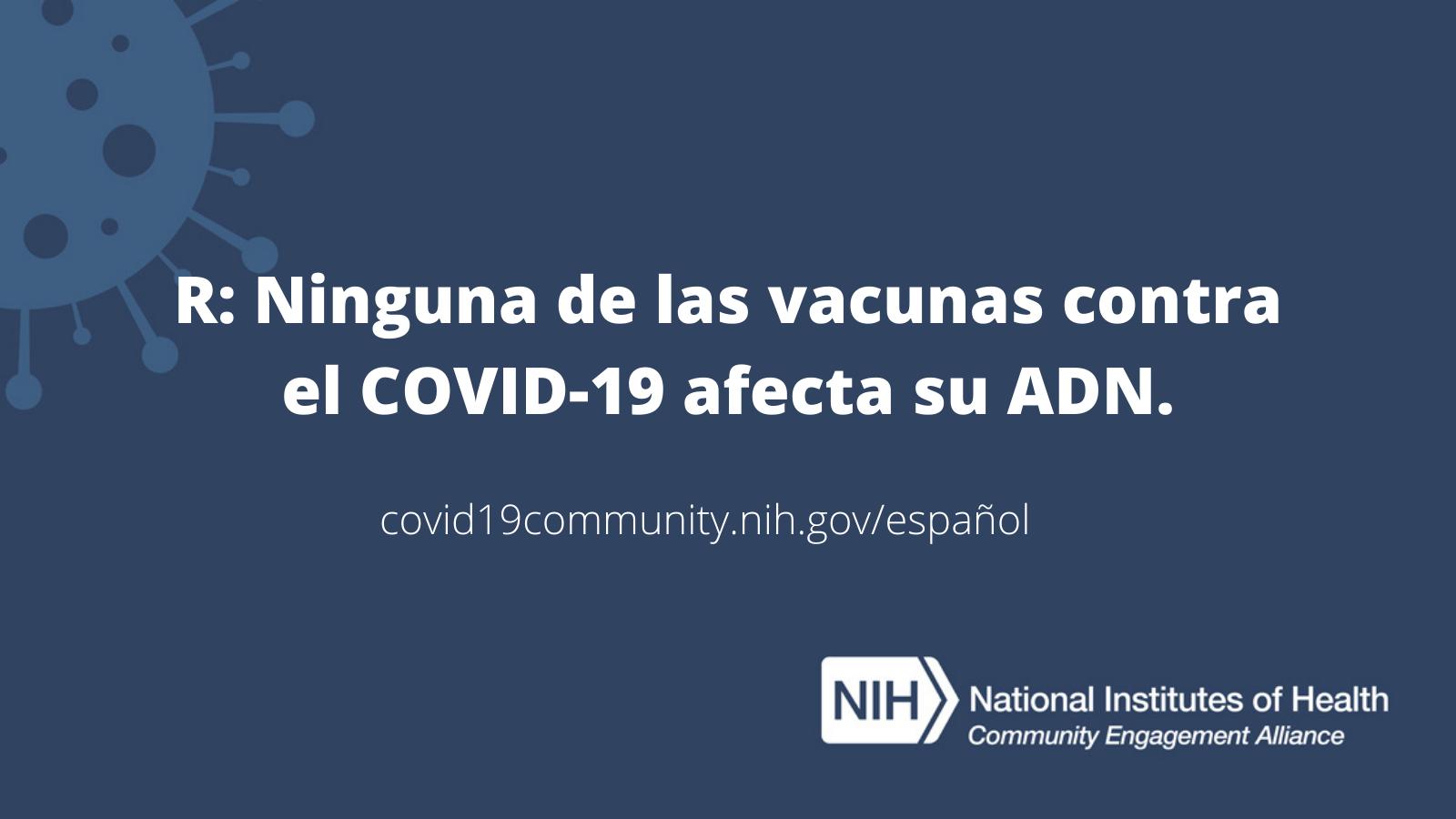 R: Ninguna de las vacunas contra el COVID-19 afecta su ADN.