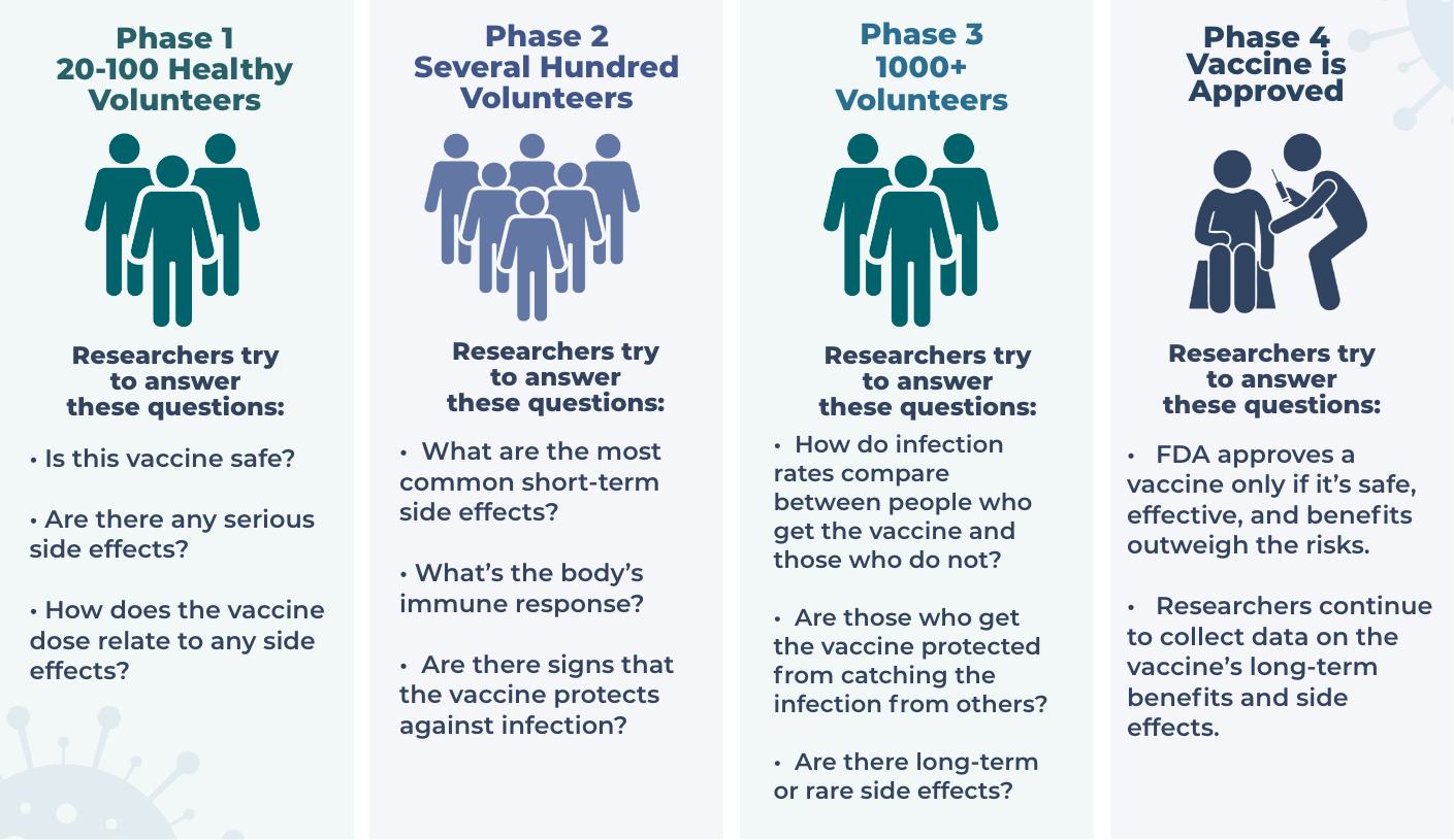 A graphic showing the phases of vaccine trials.